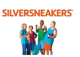 Image result for silver sneakers