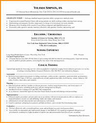 Free Professional Resume Templates Magnificent Perfect Resume Template Cv Free Downloads Examples Uk 10