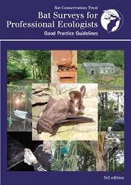 Bat Surveys For Professional Ecologists Good Practice Guidelines