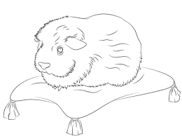 Cute Guinea Pig Sits On A Pillow Coloring Page Free Printable