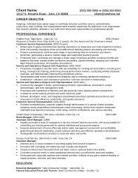 2018 Customer Service Resume Fillable Printable Pdf Forms With