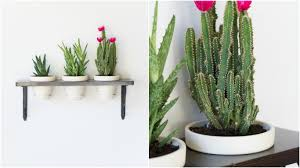 diy succulent wall decor turn plants into wall art with this diy hanging succulent gard on