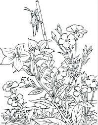 Free Printable Flower Garden Coloring Pages Spring Garden Colouring