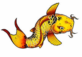 realistic koi fish drawing. Simple Drawing Download Image Tutorial For Kids And Adults This Realistic Fish Drawing  With Realistic Koi Fish Drawing S