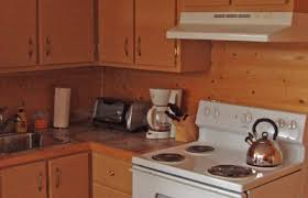 kitchen roaches in kitchen wonderful on intended how to get rid of