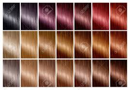 Hair Dye Colors Chart Color Chart For Hair Dye Hair Color Palette With A Wide Range