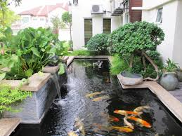 Cool Backyard Cool Ideas For Backyard Cool Backyard Ideas For Go Green