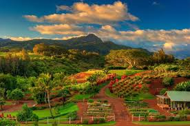 outstanding view from kaua i hawaii the garden island