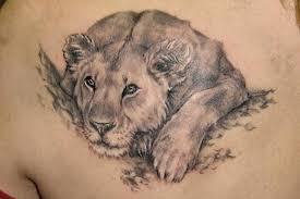 Má Tetování Lva Záležitost