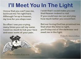 Loss Of Pet Quotes Beauteous Pet Loss Poems
