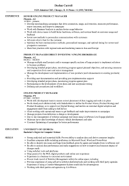 Download Product Manager Online Resume Sample as Image file .