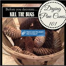 Httpsipinimgcom736x69e09e69e09e1b6e54024Christmas Crafts Made With Pine Cones