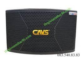 LOA KARAOKE CAVS CX10 - Thiết Bị Âm Thanh - Loa karaoke