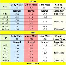 Fat Percentage Chart Best Body Fat Percentage Scale O Webvalue Co