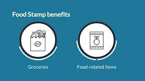 Food Stamp Program Supplemental Nutrition Assistance