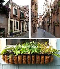 balcony gardens. Window Boxes In Barcelona Balcony Gardens