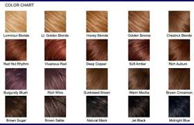 copper hair color chart 147114 our color line is pravana