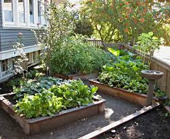 Small Picture Wonderful Vegetable Garden Landscaping Vegetable Garden Design