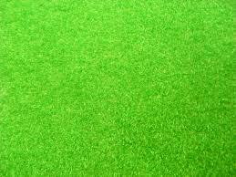 green grass field animated. Green Grass Field Animated D