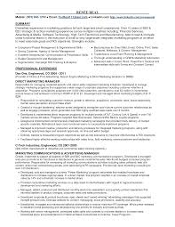 Sample Resume For Experienced Marketing Professional Resume