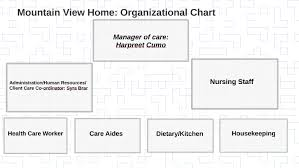 Home Organization Chart Mountain View Home Organizational Chart By Tanveer Cumo On