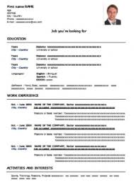 Free Cv Template To Fill Out In Word Format Cv Examples Downloads