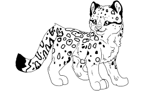 Snow Leopard Coloring Pages Print Coloring