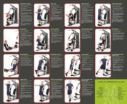 Multi Station Home Gym Exercise Chart 57 Prototypical Routine Exercise Chart For Gym