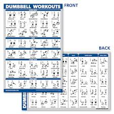 Weight Exercise Chart Free Palace Learning Dumbbell Workout Exercise Poster Laminated
