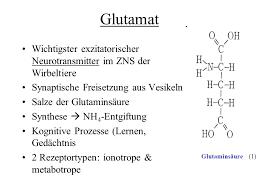 neurotransmitter bedeutung