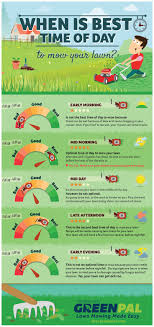 lawncare ad best 25 mow the lawn ideas on pinterest no mow grass lawn