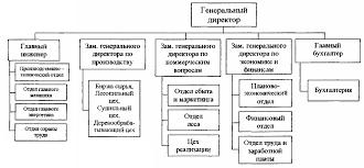 Курсовая работа Разработка организационной структуры  Организационная структура ООО Эльдорадо