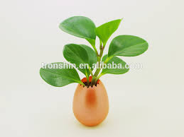 office flower pots. office desk flower potsplastic decorative pots from china