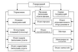 Организационная структура предприятия схема на примере ооо 8115127 jpeg