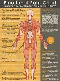 Kinesiology Muscle Chart Natural Self Healing Natural Self Healing