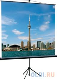 [LEV-100105] <b>Экран</b> на штативе <b>Lumien Eco View</b> 160x160 см ...