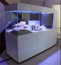 furniture aquarium. Aquarium Furniture Heavy Duty Cabinets \u0026 Hoods