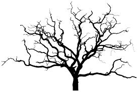 bare tree branch silhouette clipart