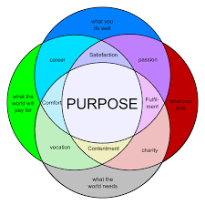 Venn Diagram Purpose Something To Ponder On The Things That Excite You Are Not