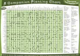 Permaculture A Companion Planting Chart And Some Natural