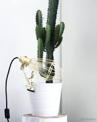 My Home Interior Cactus Ikea Light Lijn M At Manieke
