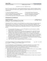 Executive Resume Samples Resume Prime Intended For Resume Sample