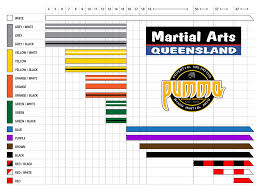 Bjj Lineage Chart Brazilian Jiu Jitsu Bjj At Martial Arts Queensland
