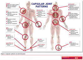 Capsular Pattern Custom Capsular Patterns At Selected Joints SportEX Dynamics 48 Flickr