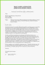 Sample Of Cover Letter Example Professional Cover Letter For Resume