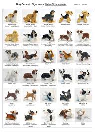Dog Breed Chart With Names 25 Fresh Dog Kinds