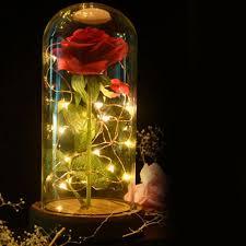 Enchanted Led Rose Light Rose Led Night Lamp Night Lamps Enchanted Rose Light