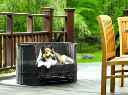 Elevated Outdoor Dog Bed Outdoor Dog Bed With Canopy The Refined ...