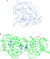 tetanus toxin ribbon backbone structures of tetanus toxoid domains open i
