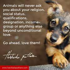 Animal Quotes 1 Harshada Pathare I Author Thought Weaver Innovator